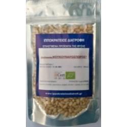 PINE NUTS Organic (ΚΟΥΚΟΥΝΑΡΟΣΠΟΡΟΣ)