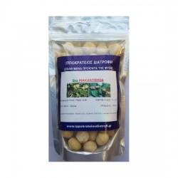 MACADAMIA NUTS Organic